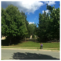236/365. Getting the mail. #familyfriends365 #markel365
