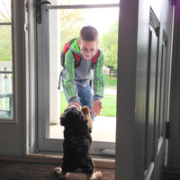 121/365. I love how Simon greets Dalton at the door when he gets off the bus. Looks like they're giving each other a high 5. #m4hp365 #ciuan365 #morkie #high5
