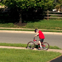 124/365. Great day for bike riding. #m4hp365 #ciuan365