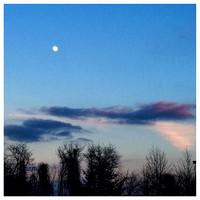 21/365. Pretty sky tonight. #Markel365 #familyfriends365