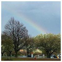 92/365. Rainbow  #Markel365 #familyfriends365 by markellifeinphotos