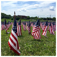 151/365. Visited the Monocacy National Battlefield to see their flag display in honor of the casualties at the Battle of Monocacy. #Markel365 #familyfriends365 #honorthefallen by markellifeinphotos