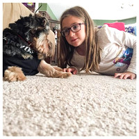 201/365. A girl and her dog. #morkie #markel365 #familyfriends365
