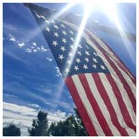 255/365. 9/11 ~ Never forget. #markel365 #familyfriends365 #neverforget #neverforgotten